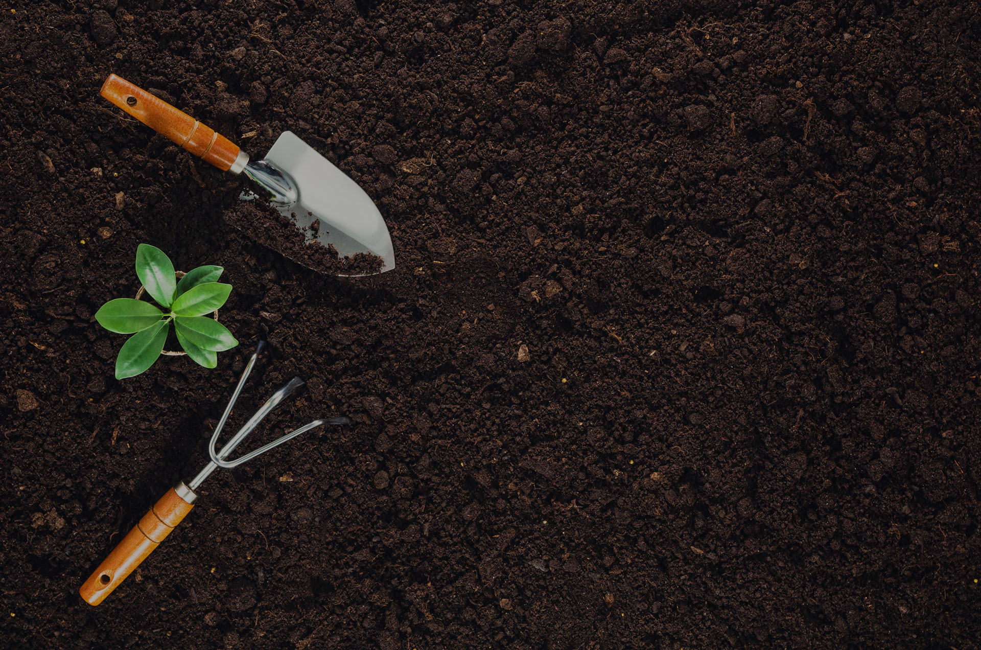 Gardening tools on fertile soil texture background seen from above, top view.